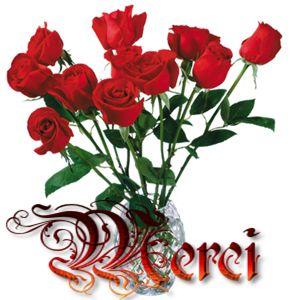 MERCI ROSES: