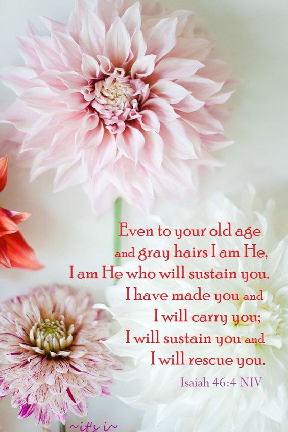 """""""And even to your old age I am he; and even to hoar hairs will I carry you: I have made, and I will bear; even I will carry, and will deliver you."""" Isaiah 46:4"""