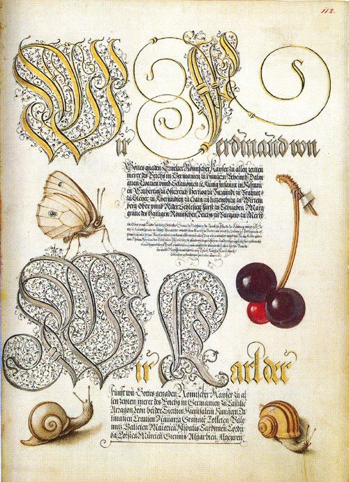 S for Snail: Mira Calligraphiae Monumenta: