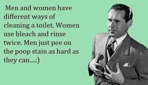 Funny E-cards About Men   How Men Attempt To Clean The Toilet Ecard Meme   2DamnFunny