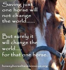 Save them