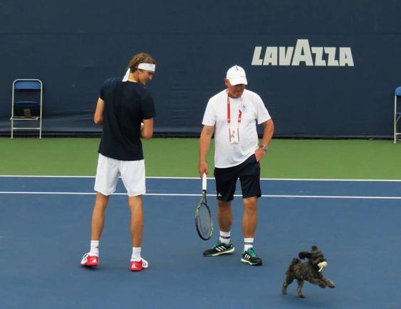 Aww Papa Son Zverev Happy Lovik Tennis Professional Tennis Players Alexander Zverev