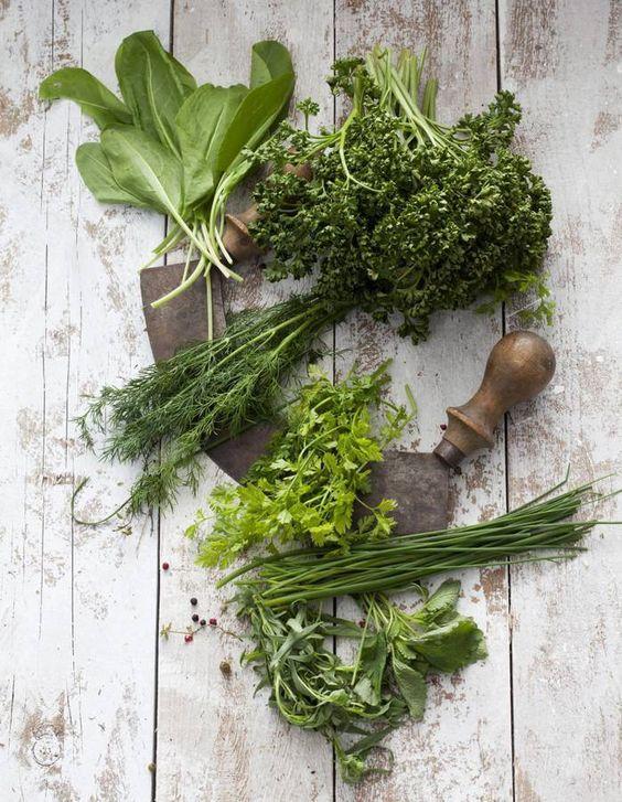 Fruits et légumes de saison en janvier : le cerfeuil
