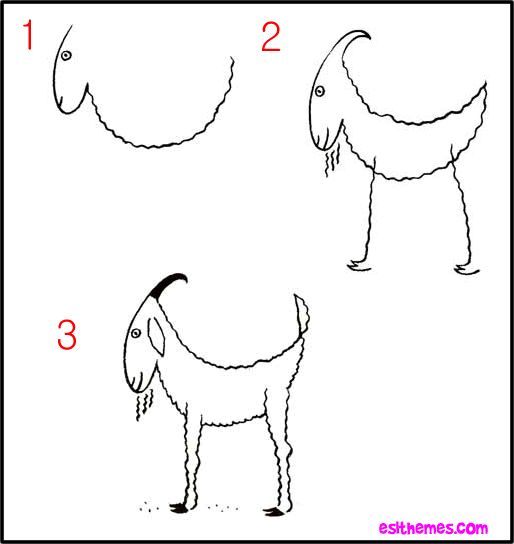 how to draw goat how to draw goats american fainting goat organization danica gabi pinterest fainting goat goats and organizations