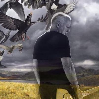 David Gilmour Tour