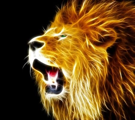 light lion wallpaper - photo #5