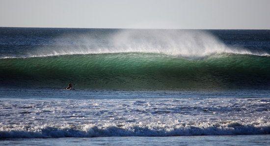 One Of The Many Waves In Avellanas Picture Of Casa Surf Playa Avellanas Tripadvisor Beach Life Surfing Trip Advisor