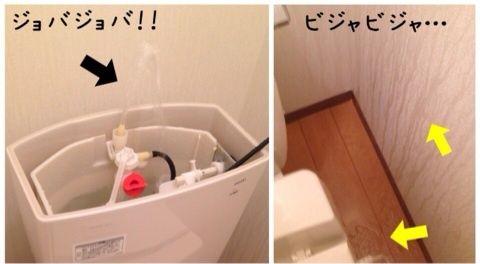 大好評 トイレ汚タンク 掃除法 大公開スペシャル 掃除 トイレ