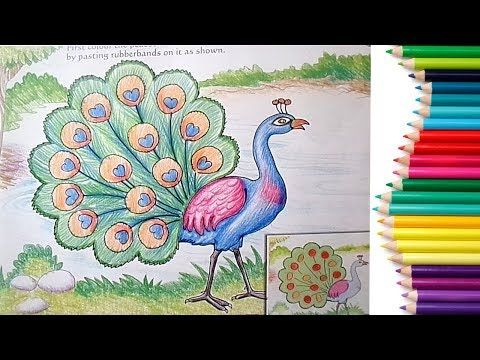 Peacock Drawing For Kids
