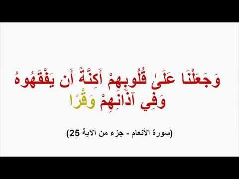 فائدة في أقل من دقيقة معاني كلمات القرآن و ف ي آذ ان ه م و ق ر ا Youtube Learning Arabic Improve Your Vocabulary Vocabulary