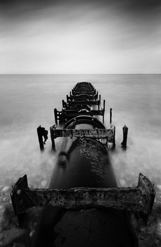 Sea Spine by Charlie Pragnell