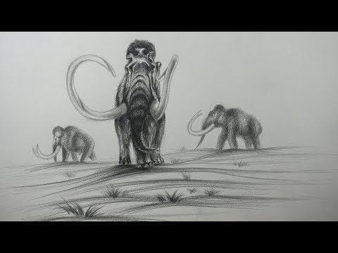 Themaxiarte Youtube Curso De Dibujo Online Como Dibujar Dibujos