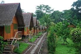 Esto es en Tambopata selva Peruana, es genial cuando uno visitas estos lugares. https://www.facebook.com/pages/Empower-Network-Bim-Latino/1478584255698067?id=1478584255698067&sk=app_190322544333196