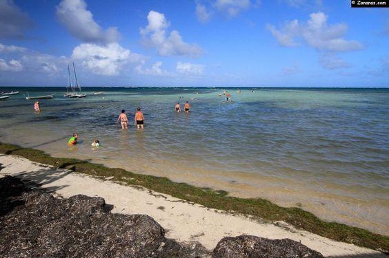 Pointe Faula - Martinique