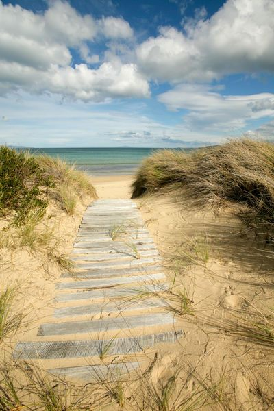 'Path to the Beach - Dolphin Sands, Australia', photo by Jess Gibbs, via Artflakes: