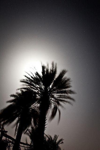 Sahara Desert @ 2am by Eyebeam Photography, via Flickr