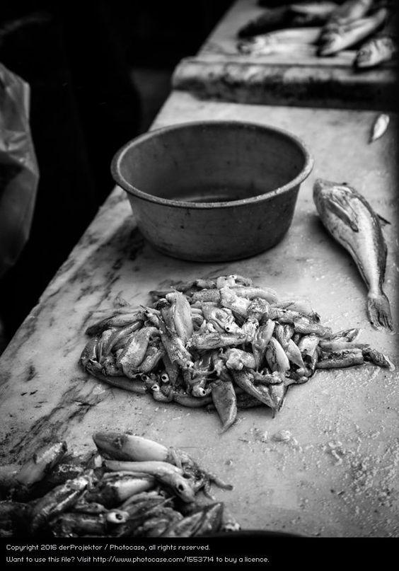 Foto 'Fischerei in Vieira Leiria 9' von 'derProjektor'