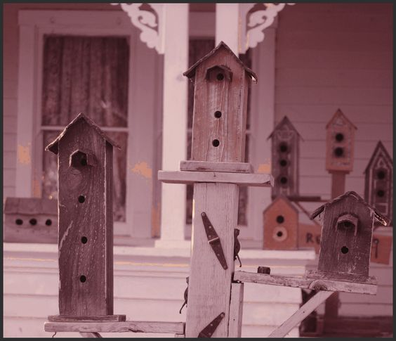 And more birdhouses #4