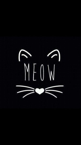 Dieses minimalistische Kätzchen, mit dem Du Deine innere Cat Lady zum Ausdruck bringen kannst: | 25 bezaubernde Hintergrundbilder für Dein Handy, die Dich zum Lächeln...
