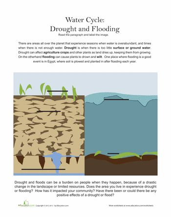 compare and contrast between the flood Chapter to compare and contrast the characteristics of streams near their origins  and near their mouths 2 examine the image of the lower course of the.