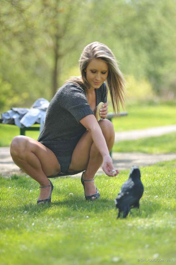 What's the, Crows and The birds on Pinterest