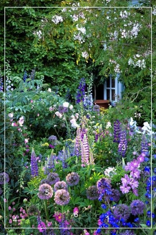 Cottage Gardens 31415 What Is More Laid Back And Lovely At The Same Time Than A Cottage Style G In 2020 Small Cottage Garden Ideas Cottage Garden Design Cottage Garden