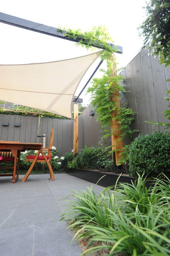 Stalen pergola planten border klimplanten kleine tuin pinterest - Tent tuin pergola ...