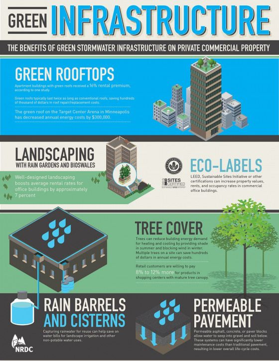 Quantifying The Benefits Of Greenrooms Landscaping Tree Canopies And Bio Swale For Commercial Property Owners Urban Green Roof Water Management Infrastructure