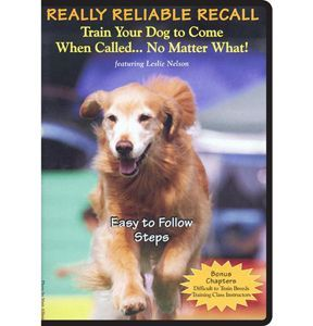 Really Reliable Recall Dvd Training Your Dog Dog Training Dogs
