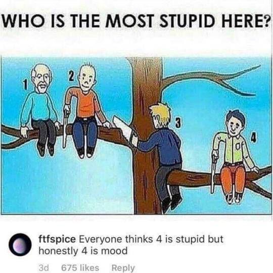 who is stupid