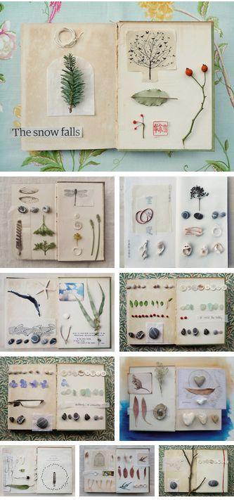 An Unwritten Book by Fiona Watson (wildgoosechase) nature, journal, scrapbook, art, shells, leaves, flowers,