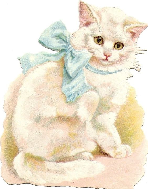 Oblaten Glanzbild scrap die cut chromo Katze white cat Halsband ribbon kitten: