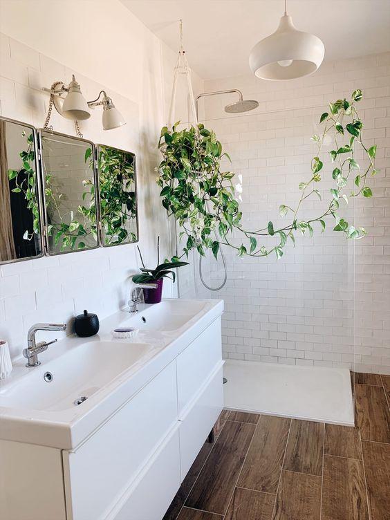 Le pothos (ou scindapsus), LA plante increvable et ses différents cultivars - Zess.fr // Lifestyle . mode . déco . maman . DIY