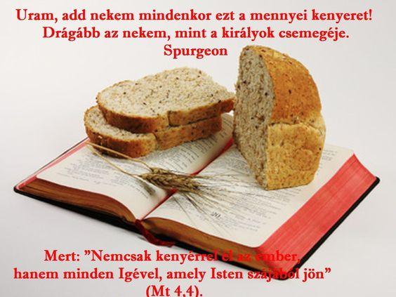 Nem csak kenyérrel  él az ember...