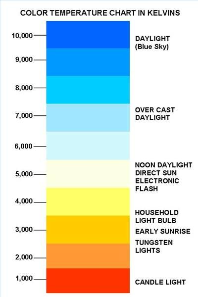 light bulb temperature - Google Search   For the Home   Pinterest ...