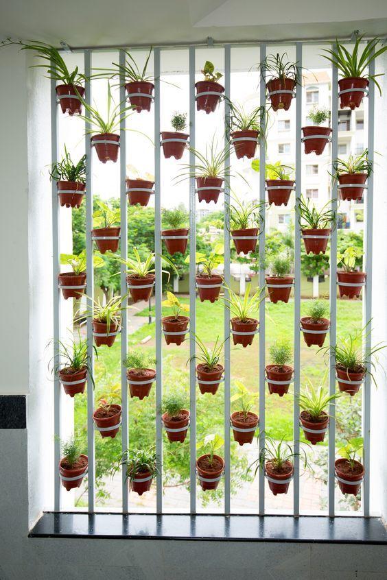15 Beautiful Hanging Plants Ideas Hanging Plants Hanging