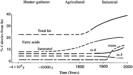 Hypothetical scheme of fat, fatty acid (ω6, ω3, trans, and total) intake (as percent of calories from fat). Data were extrapolated from cross-sectional analyses of contemporary hunter-gatherer populations and from longitudinal observations  http://www.ncbi.nlm.nih.gov/pmc/articles/PMC4808858/