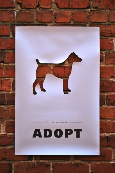Fill the emptiness. Adopt a pet!