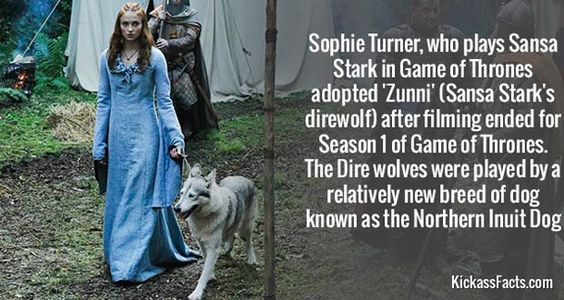 Awesome-Facts-of-the-Day-Sophie-Turner