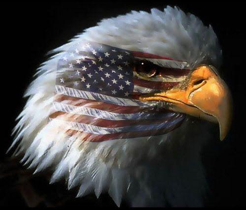 American Flag with Indian Head | alfaisaliah_Saudi_arabia.jpg - (513x368 - 75kB)
