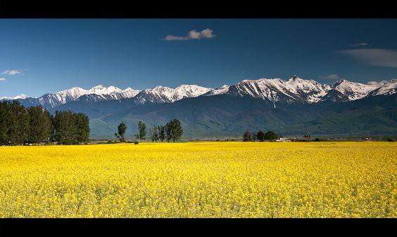 Contraste, Fagaras Mountains, by iulian iusty, via 500px