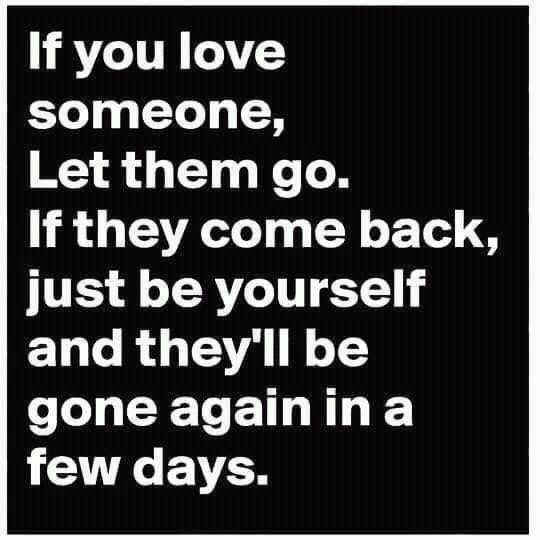 Pin By Melissa Kidd On Memes Quotes Memes Quotes Funny Quotes If You Love Someone