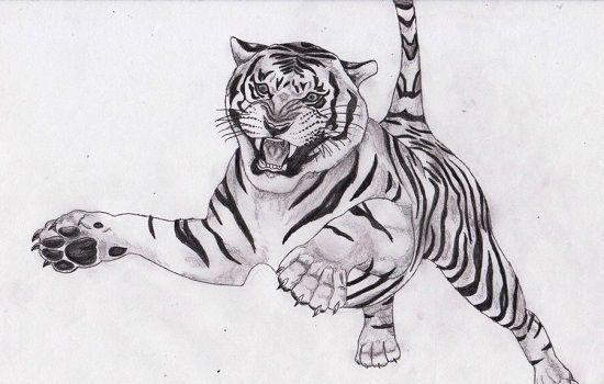 Mandalas De Tigres Para Colorear Dibujos Pintados Tigre Para Colorear Tigre Para Dibujar Tigre Para Pintar