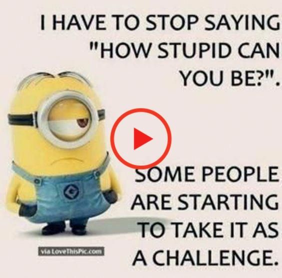 Nice 75 Best Funny Quotes Life And Funny Sayings 62 Read More By Jessyyork 75 And Best In 2020 Fun Quotes Funny Funny Quotes Life Quotes