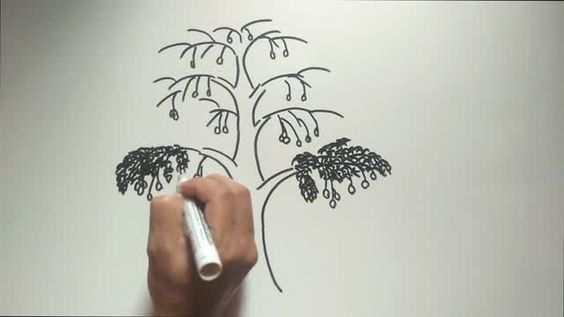Cara Menggambar Pohon Mangga Psikotes Gambar Pohon Dan Tes Wartegg Agar Lolos Psikotest Tes Tes Psikotes Pt Hpm Honda Prospec Menggambar Pohon Gambar Orang