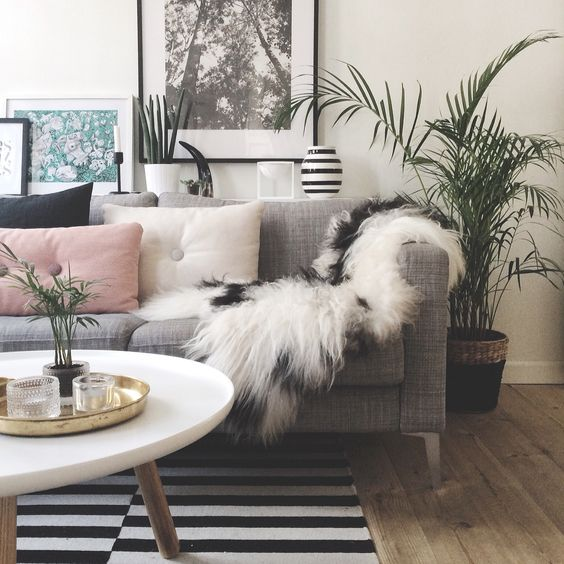 Livingroom - icelandic sheepskin: