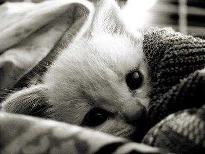 im cold!!