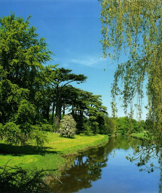 Parks, England And Willow Tree On Pinterest