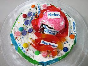 The Science and Technology Lady: Edible Science Model Projects: Part 2--Cell Cakes!