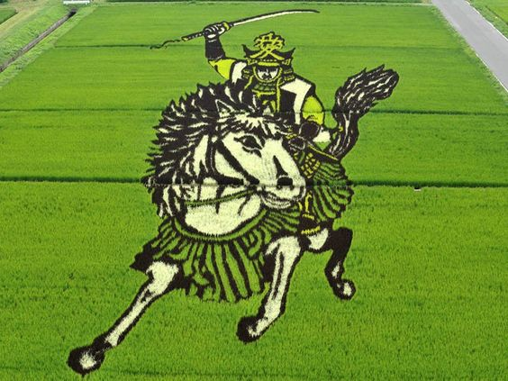 [PHOTOS] Tsugaru Japan, murals and drawings with the rice plant - ForoCoches